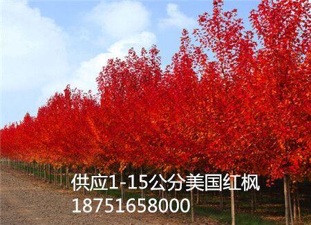 QQ图片181026133415.jpg